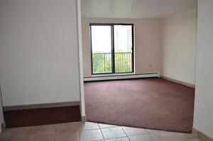 We Pay All Utilities! 1BD APT with Balcony - Downtown Dundas St