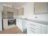 Amazingly attractive 1 bed flat in Upper Clapton - Hackney E5