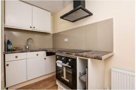 ONE BEDROOM/Studio Flat for Rent Ideal for Professionals