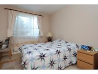 A spacious furnished two double bedroom ground floor flat to rent on Cromwell Road