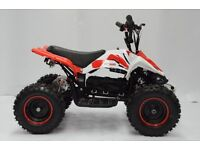 Falcon FT800 800W Electric Kids Mini Quad Bike