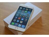 iPhone 6 Plus 16gb gold EE network