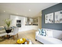Stunning and spacious 2 BED/2BATH flat in Vauxhall. 8 MIN WALK TO VAUXHALL STATION. FURNISHED.