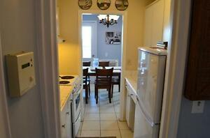 All Inclusive Two Bedroom Apartment - Downtown - Ouellette Ave