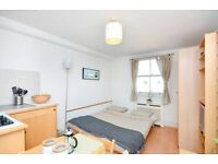Pimlico - Self Contained Studio Apartment FREE WIFI and SKY TV