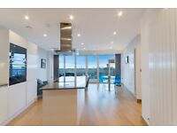 Amazing 39th floor 1 bed apartment in Arena tower - Baltimore - Canary Wharf E14 - Gym - VIEWS!
