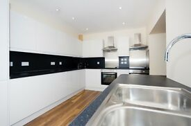 6 Bedroom Fully Furnished Flat- Loch Street
