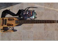 Traveler Bass - Traveller Bass guitar made in the USA
