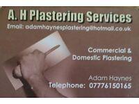 A Haynes plastering services