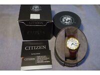citizen eco mens watch