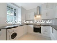 SPACIOUS AND BRIGHT THREE BED APARTMENT IN VICTORIA WESTMINSTER - 10 MIN FROM BIG BEN- £515PW CHEAP