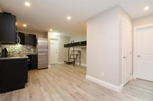 Stunning, Renovated Basement Bachelor in the Glebe for July 1st!