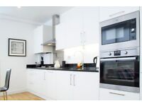 Modern 2bed/2bath/Old Street area*3 months minimum*Fully furnished