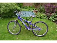 Girls' bicycle - Dawes- blue