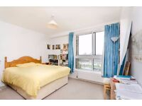 SShort stay - Doubleroom for Single Female - Putney / Barnes area