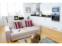 Modern 2bed/2bath apartment*Old street area*3 months minimum*Fully furnished
