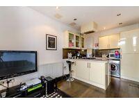 Impressive one bedroom flat - Balham