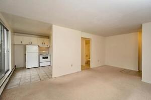 Updated Two Bedroom Avail Now - Brantford - Close to Parks