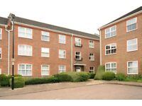 Paxton Road - Well presented dual aspect studio flat to rent within a popular development