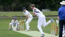 Hobart Social Cricket Team looking for more players Hobart Region Preview