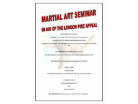 Martial Arts Multi Style Charity Seminar for Charity 29th July