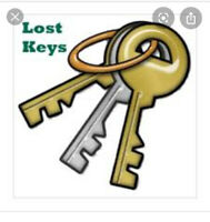 Lost keys @ 137ave&97st