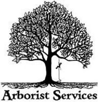 -----Affordable Arborist Tree Services----Insured!  647-677-8922