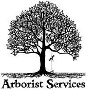 ---------Affordable Arborist Tree Services------------Insured!
