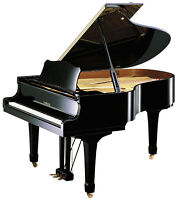 COURS DE PIANO -RÉSULTATS GARANTIS-