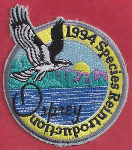 Pa fish game commission related pa state park 1994 osprey for Pa fish and game