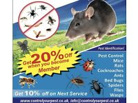 Pest control bedbugs Mice Rat wasps cockroaches flies fleas ants pest removal