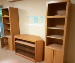 Tv console and shelf units