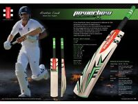 Gray NICOLS English willow grade a cricket bats
