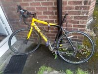 Carrerra TDF adult road bike. >1000 miles, new chain