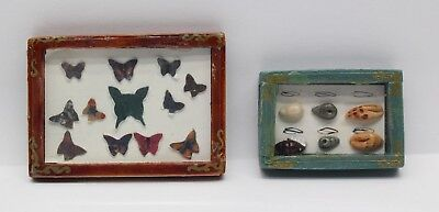 NEW Dolls House Miniatures Butterfly & Shell Collection 1/12th Scale FREE P&P