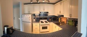 Furnished 1 bed room condo Lower water street!