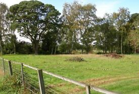 1/2 Acre (.22H) Land with Full Planning, Power and Telephone on sight Water close by