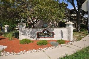 Marquis East at Trillium Park - 1 Bedroom Apartment for Rent Sarnia Sarnia Area image 4