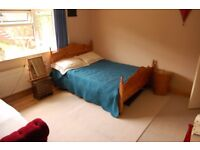 Large double room with view for dog and cat friendly person