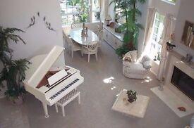 white baby grand piano