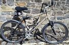TREK 300 Navigator Mountain Bike