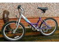 Raleigh Starz Girl's Bike