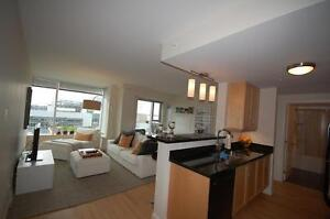 Rare Vacancy in Vic Suites- 1 Bdrm, Available JANUARY!