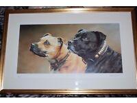 staffordshire bull terrier print by stephen kingston