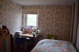 bright double bed room in an HMO flat near uni £270/M