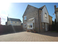 Cul-De-Sac Position 4 Bedroom House, Ensuite, Bathroom, Double Garage, Parking For 5 cars - Kelvedon