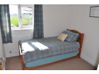 Single bed plus pull out inc 2 mattresses