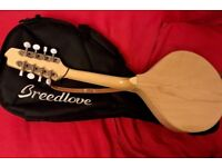 Breedlove mandolin...... now reduced price