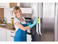 The Best Domestic Cleaner,Everything BrightShining Clean,Cleaning Lady,Carpet Cleaning,House Cleaner