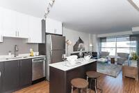 Pet friendly 2 BDRM suites in Centretown - Renting Spring 2015